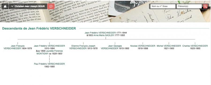 Verschneider_arbre généalogique